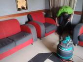 Pro Upholstery Cleaners Lagos