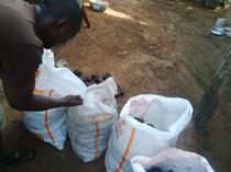 Practical Training on General Snail Farm Management in Nigeria