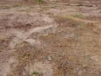 PLOTS OF LAND FOR SALE AT MAX GARDENS, ODEOMI, IBEJU-LEKKI