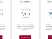 Affordable Web Domain and Hosting
